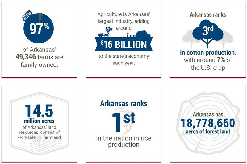 Ag Facts infographic