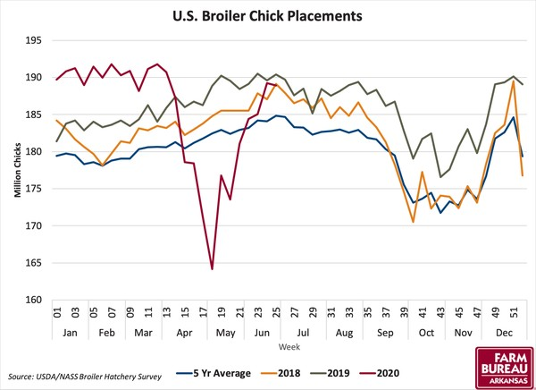 Broiler Chicken Placement Chart