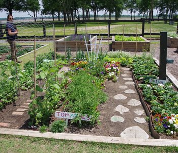 Farm Bureau Awards Outdoor Garden Mini-Grants